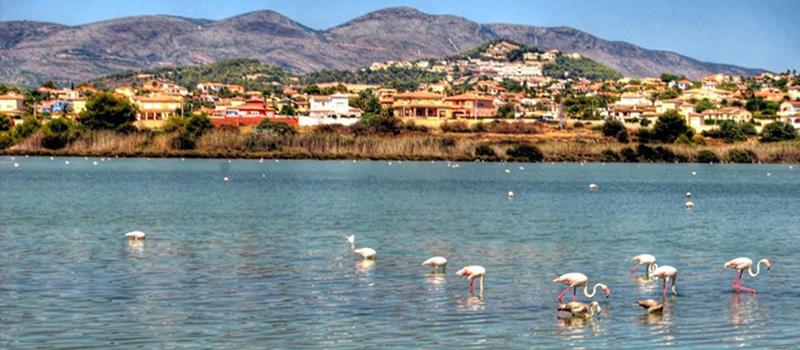 Las Salinas Calpe